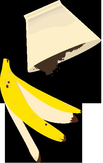 peau de banae et marc de café